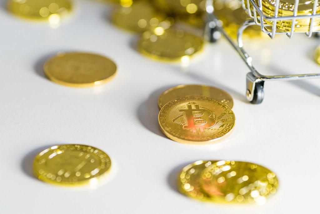 bitcoin-theme-6